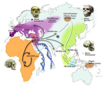 distribución de especies